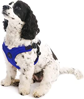 Gooby - Escape Free Sport Harness, Small Dog Step-in Neoprene Harness for Dogs That Like to Escape Their Harness