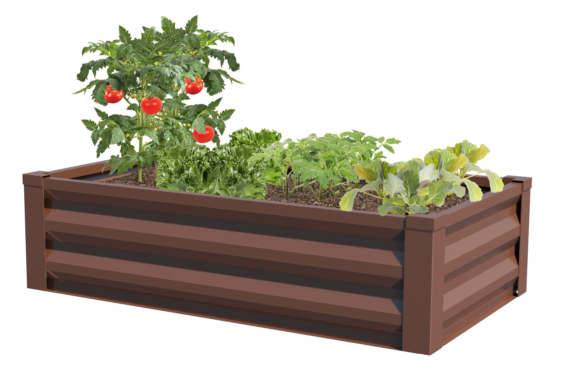Metal Frame Raised Garden Bed Kit Multi Sizes Elevated Planter Box For Growing Herbs Vegetables Greens Strawberries Flowers Above Ground Galvanized Flower Bed Kit 4 X 4 Ft Or 6 X 2