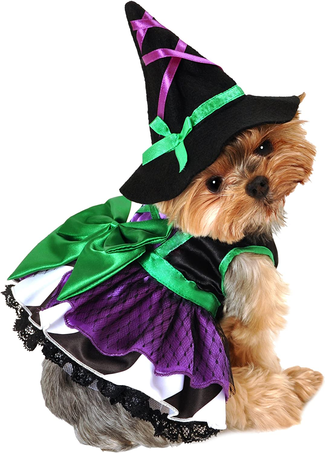 Anit Accessories 16Inch Scary Witch Dog Costume, Medium