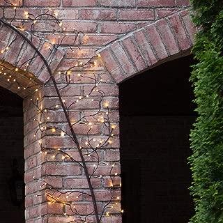 10' Lighted Climbing Decorative Vine, Indoor/Outdoor Accent Wall Decor, Vine Artificial Vine Decor, Garden Wall Decoration (Brown Vine, Warm White LED Lights)