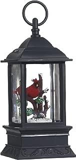 Best lighted water lantern cardinal Reviews