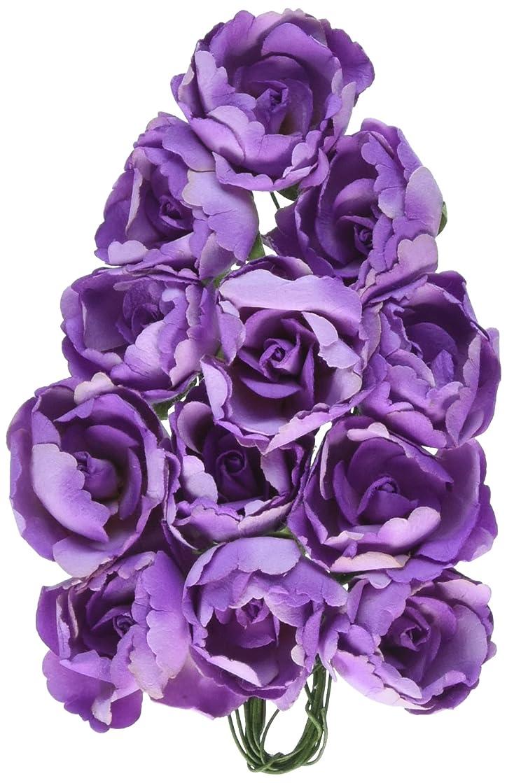 Prima Marketing 655350561697 Soprano Scrapbooking Embellishments, Purple