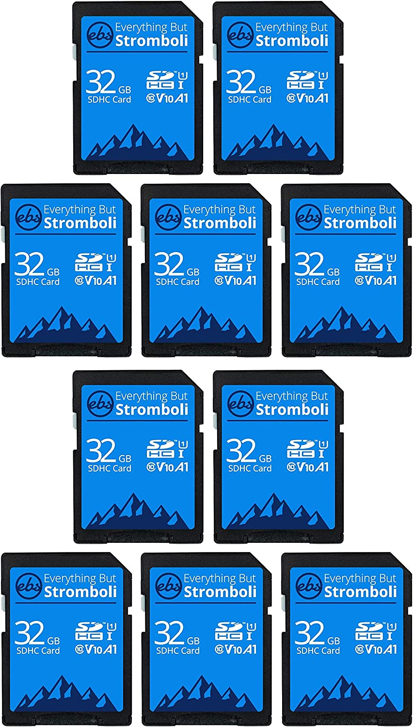 Everything But Stromboli 32GB SD Card (10 Pack) Speed Class 10 UHS-1 32G SDHC Memory Cards for Compatible Camera, Computer, Trail Cam, Video Camcorder
