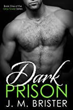 Dark Prison (Gray Tower Book 1)