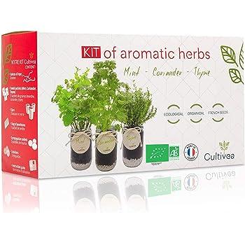 Cultivea Set completo - Fai crescere le tue di erbe aromatiche - 100% semi ecologici e biologici - Semi con 3 vasetti di vetro – DIY - (menta, coriandolo, thym)