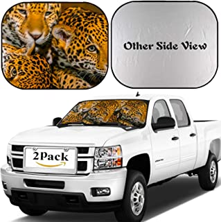 MSD Car Windshield Sun Shade, Universal Fit 2-Piece Foldable Car Sunshade, Block Sun Glare, UV and Heat, Sun Visor, Image ID: 23401188 Two Young Jaguars and Their Mother
