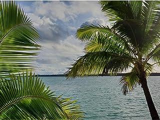 Koumu Aitutaki Cooköarna paradis Lagun sommar palmträd foto stort tryck affisch väggkonst dekor bild