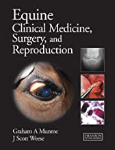 Equine Clinical Medicine, Surgery and Reproduction (3D Photorealistic Rendering)