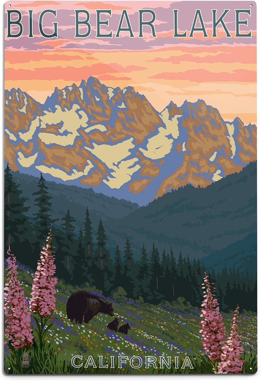 Lantern Ranking TOP10 Press Big Bear Branded goods Lake Spring and Flower Bears California