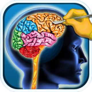 sim brain