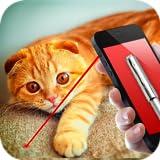 Laser Cat Simulator 2016