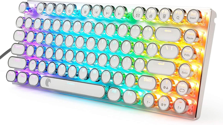 E-Yooso 60% RGB Retro Steampunk Mechanical Keyboard, Luxury Vintage USB Keyboard with Compact 81 Keys, Blue Switches White