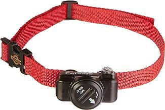 Best petsafe dog collar Reviews