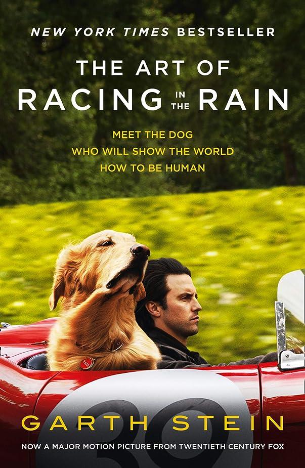 接続メモマージThe Art of Racing in the Rain (English Edition)
