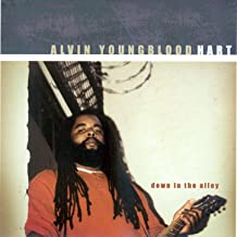 Best alvin youngblood hart down in the alley Reviews