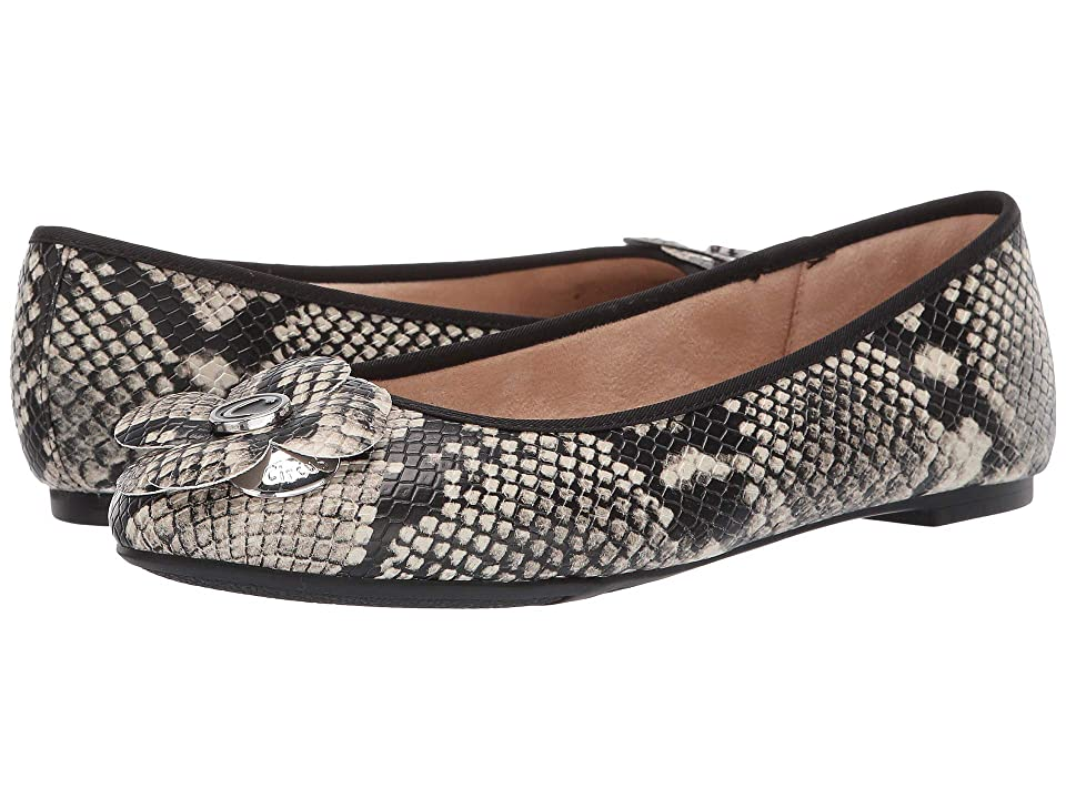 Circus by Sam Edelman Cecilia (Cashmere Amazon Python) Women