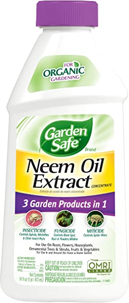 Garden Safe ASDFFG Neem Oil Extract Concentrate 2 Pack