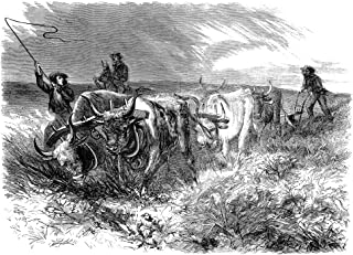 Plowing 1868 NPlowing On The Prairies Beyond The Mississippi Wood Engraving American 1868 Poster Print by (24 x 36)