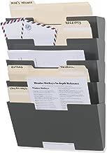 Wallniture Lisbon Wall Mount Steel Vertical File Organizer Holder Rack 5 Tier Modular Design Multi-Purpose Organize Display Magazines Sort Files and Folders (Gray)