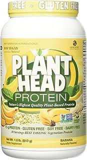 Genceutic Naturals Banana Plant Head Protein, 1.8 Pound