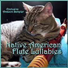 """Feathered Friends' Sleep Songs (From """"Meditation & Yoga - Flutes"""")"""