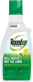 Roundup For Lawns2 Concentrate (Northern), 32 oz. - Lawn Safe Weed Killer for Northern Lawns, Kills Crabgrass, Dandelion, Clover and Yellow Nutsedge - Kills Weeds, Not the Lawn