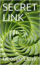 SECRET LINK (English Edition)