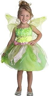 Palamon Costume Twinkle Garden Fairy Costume