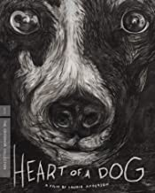 heart of a dog criterion