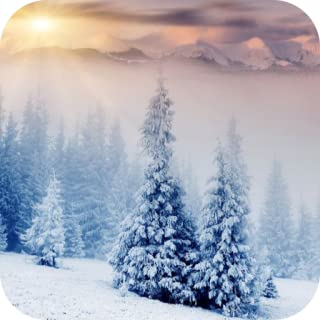 Best free snow wallpaper Reviews