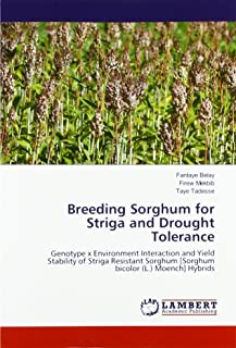 Breeding Sorghum for Striga and Drought Tolerance: Genotype x Environment Interaction and Yield Stability of Striga Resistant Sorghum [Sorghum bicolor (L.) Moench] Hybrids
