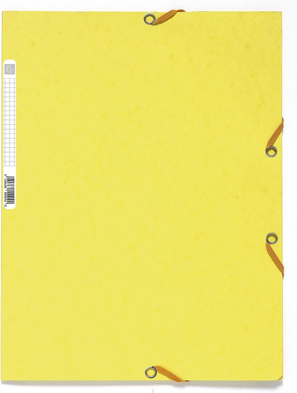 Exacompta 55529E - Carpeta con goma, A4, color limón