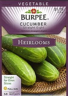 Burpee Cucumber Straight Eight 61887 100 Heirloom Seeds