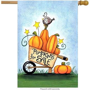 "Autumn Home Chickadees House Flag Fall Pumpkins 28/"" x 40/"" Briarwood Lane"