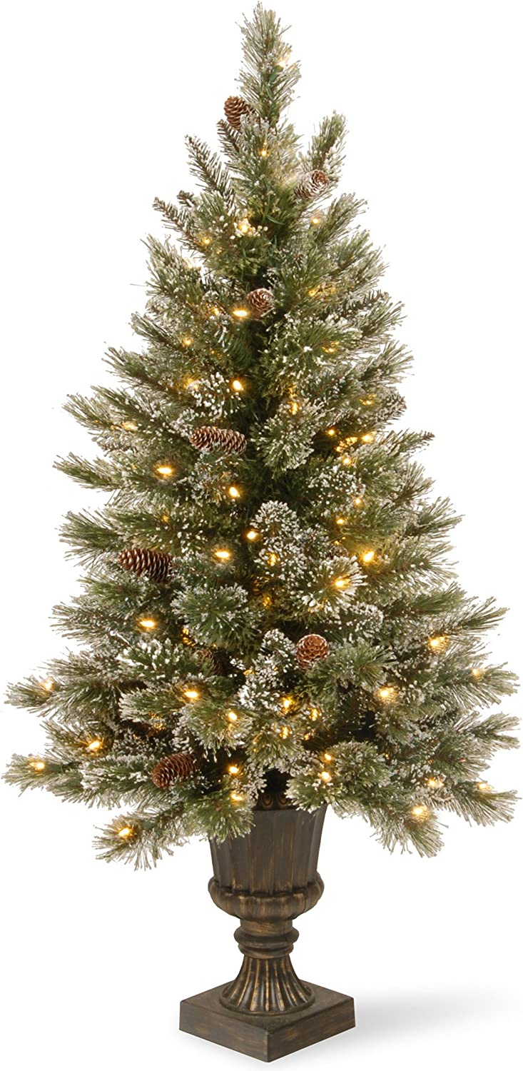 National Ranking TOP7 Tree 5 Very popular Foot Glittery Bristle Pine Entrance with Gl
