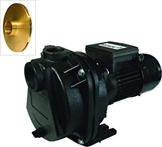 Best 3 4 hp sprinkler pump Reviews