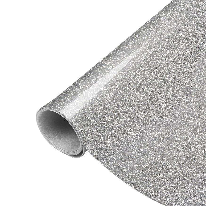 PAMISO 10''X 39'' Glitter Heat Transfer Vinyl - Silver Glitter HTV - Iron on Vinyl, Tshirt Vinyl, Glitter Vinyl Rolls(Silver)