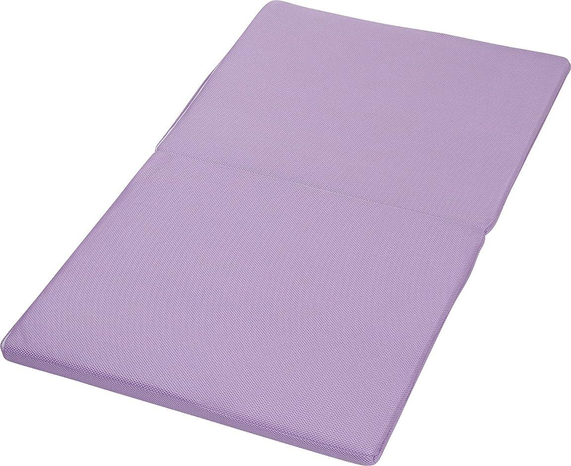 グリーンバックバルクなかなかHaruka?style(ハルカ?スタイル) 2つ折固綿洗える ごろ寝マットレス 70×120×3cm パープル -