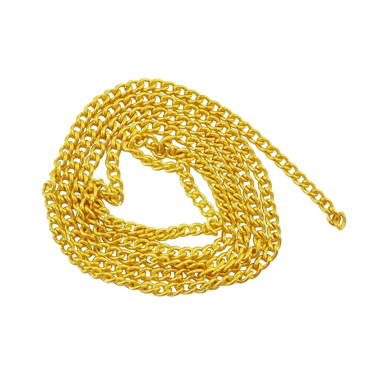 哲学者差評論家ネイルパーツ ネイルチェーン 20cm ゴールド 金 デコパーツ
