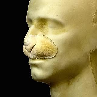 rabbit nose prosthetic