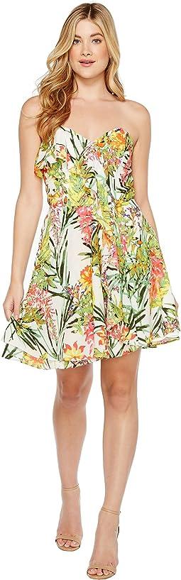 Leanna Woven Strapless Dress