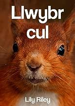 Llwybr cul (Welsh Edition)