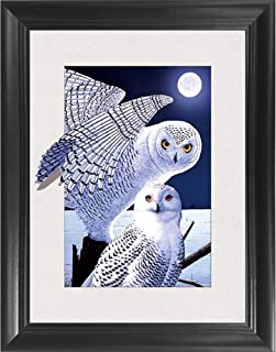 Owl 5D / 3D Poster Wall Art Decor Framed Print | 14.5x18.5 | Lenticular Posters & Pictures | Memorabilia Gifts for Guys & Girls Bedroom | Vintage Nature Artwork & Animal Scene of Beautiful Bird
