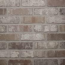 Single Thin Bricks - Flats for Brickwebb (Box of 50) - Rushmore