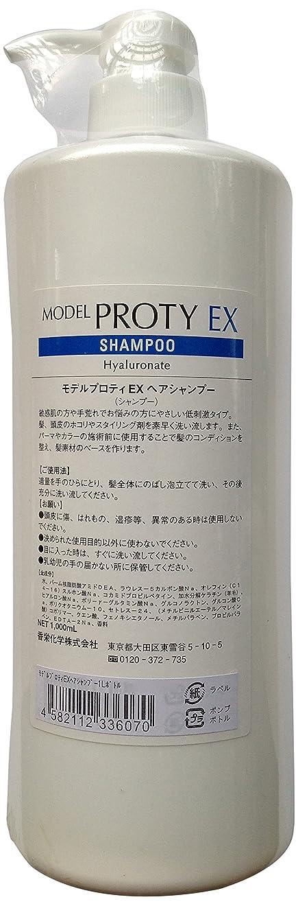 想起三メモ香栄化学 モデルプロティEXヘアシャンプー1000ml