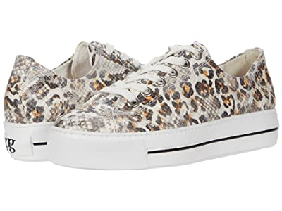 Paul Green Bixby Sneaker (Leopard/Orange Combo) Women
