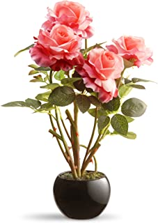 National Tree 16.5 Inch Pink Rose Flowers with Black Round Ceramic Base (NF36-5185S-1)