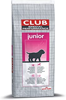 10 Mejor Royal Canin Club Performance Junior de 2020 – Mejor valorados y revisados