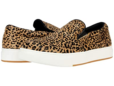 Steve Madden Coulter-L Sneaker (Leopard) Women