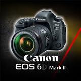 Canon 6D mark II Training